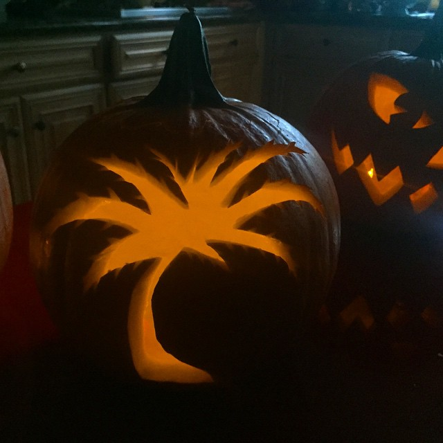 #miami #halloween 🌴🎃 #pumpkin #palmtree #305 #dade #tropical @haughtee @jasondaquino
