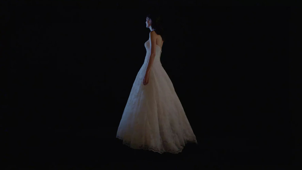 David's Bridal 2017