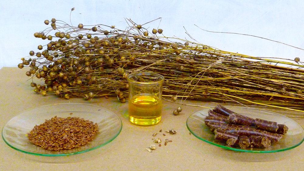 Is flaxseed good for menopause