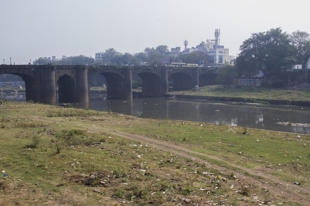 The cattle owners who let their livestock graze by the Mula River flowing through central Pune don't let the animals drink from its polluted water.
