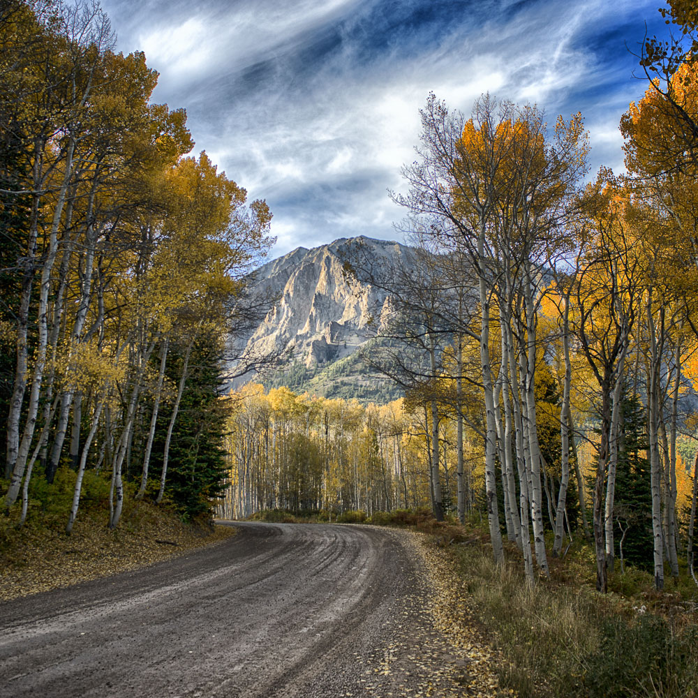 colorado-autumn-aspens20.jpg