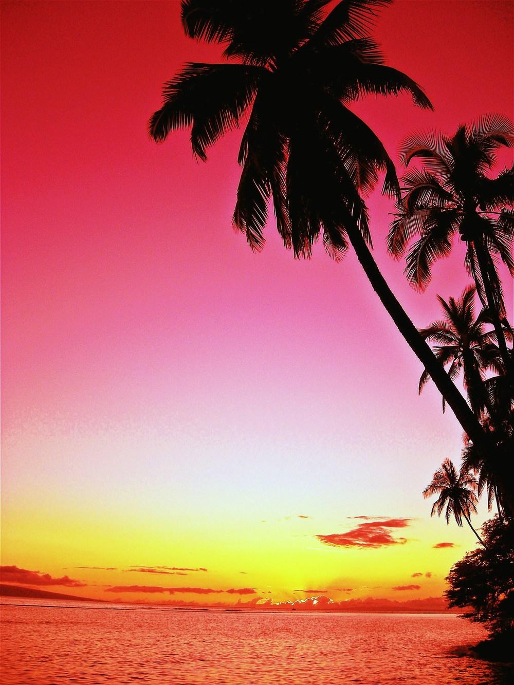Maui 2008 114.JPG