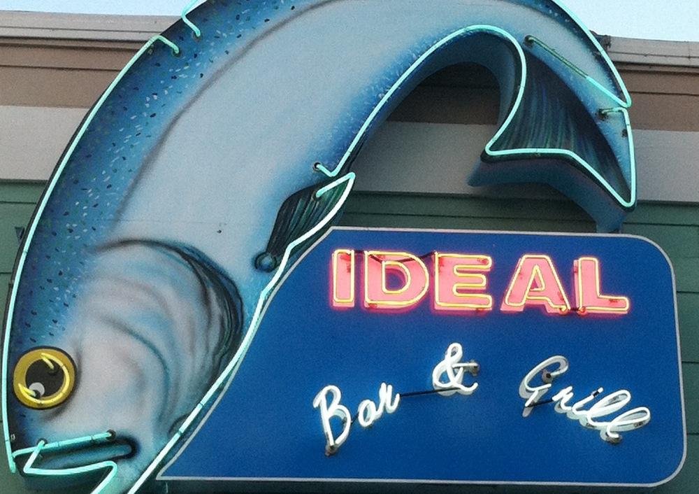 ideal fish.JPG