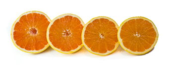 grapefruit-halves2-small.jpg