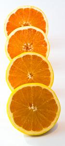 grapefruit-halves1-small.jpg