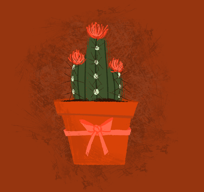 Blooming Cacti - 2014