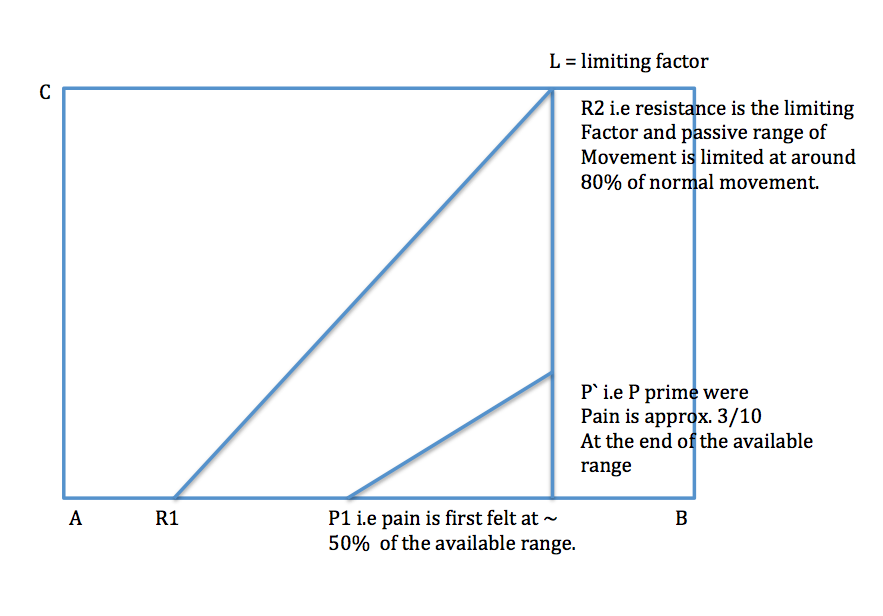 Movement Diagrams  U2014 Rayner  U0026 Smale