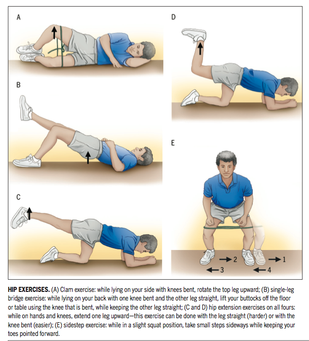 Which exercises target the Gluteal Muscles while minimizing activation ...