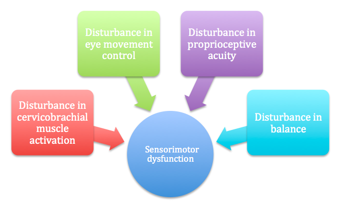 Multiple variables that contribute to the development of sensorimotor dysfunction.