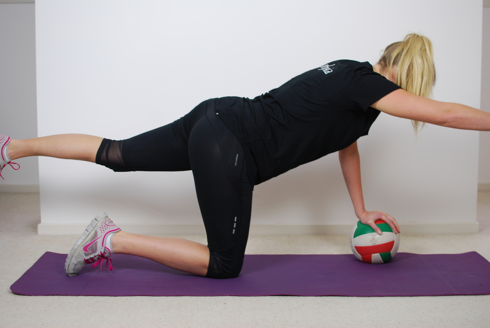 Which Exercises Target The Gluteal Muscles While