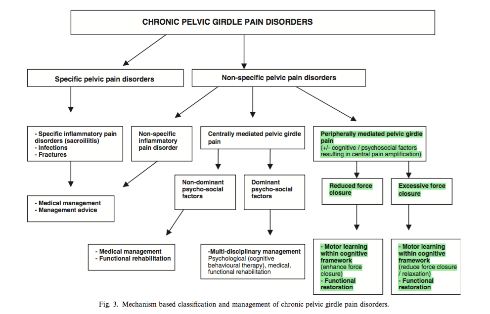 Clinical reasoning pathway (O'Sullivan & Beales., 2007a, p.90)