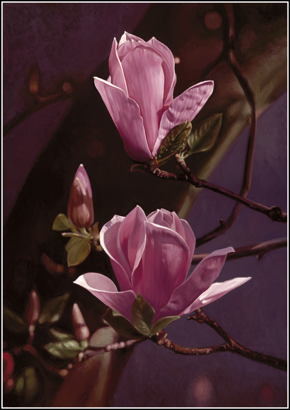 Magnolia 3a.png