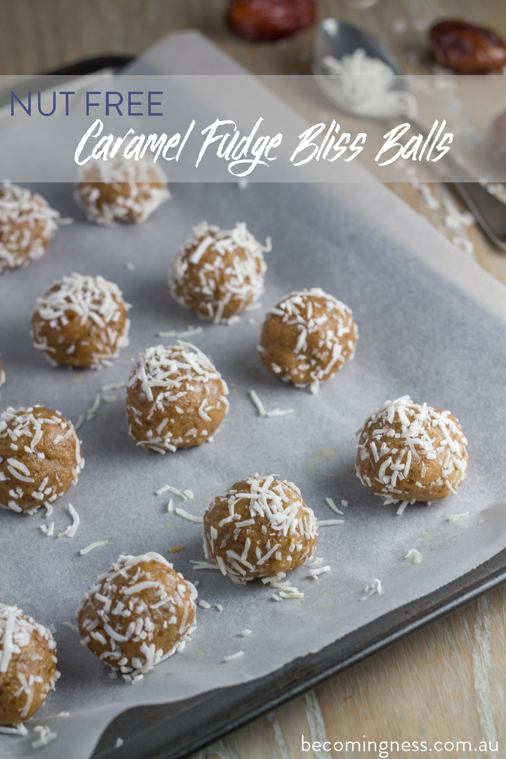 nut-free-caramel-fudge-bliss-balls