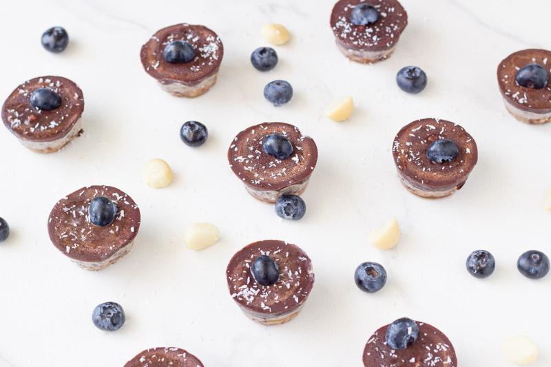 Raw-Blueberry-Slice-Bites