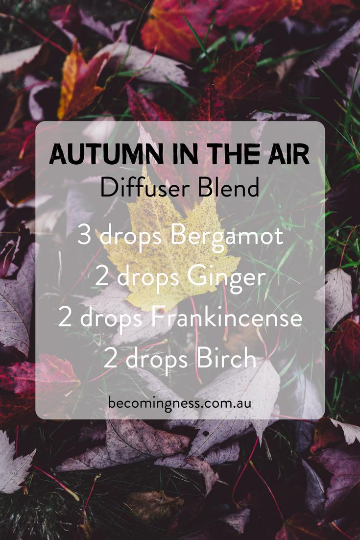 autumn-in-the-air-diffuser-blend