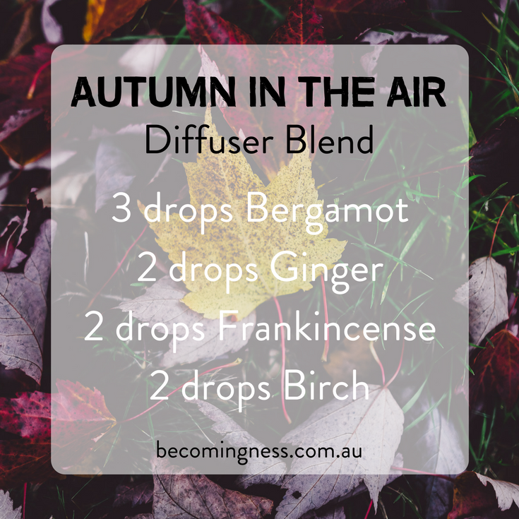 autumn-in-the-air-diffuser-blend