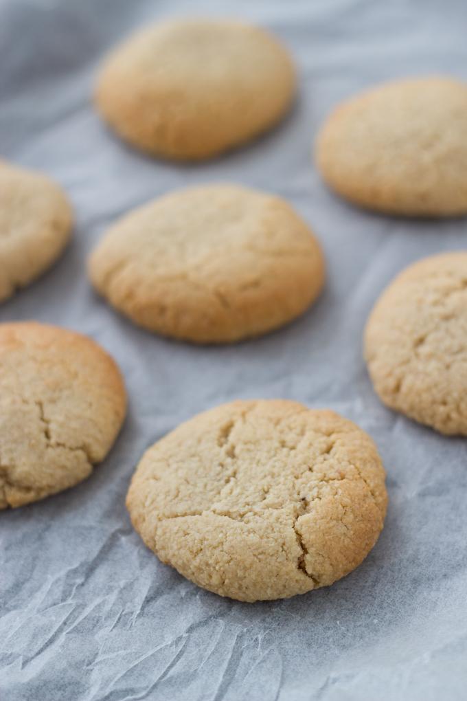 Ginger Cookies-1.jpg