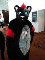 small furry1.jpg