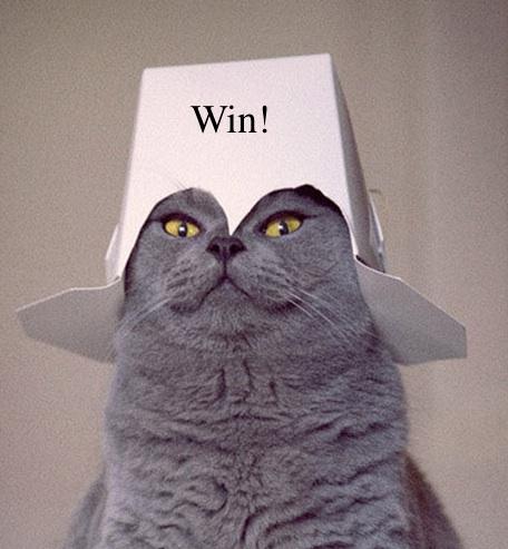 Ali gets to wear the 'winner' hat