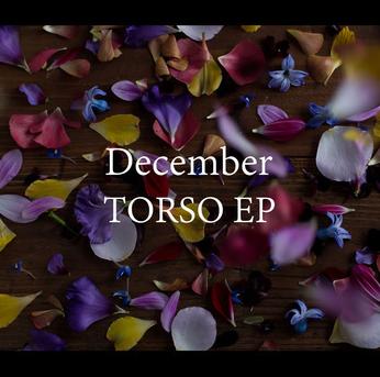 TORSO专辑封面.png
