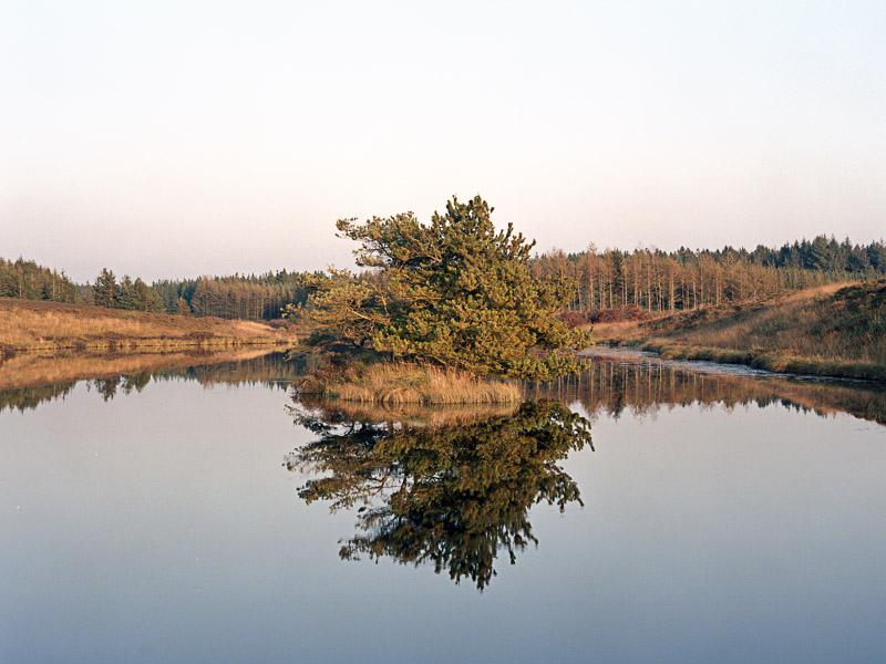 201111_37928.jpg
