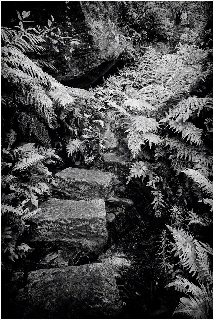 grand-canyon-trail.jpg