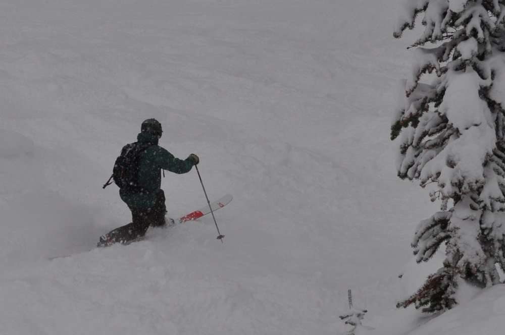 - Telemark Skier Brent Cestone enjoying North Bowl in Revelstoke British Columbia