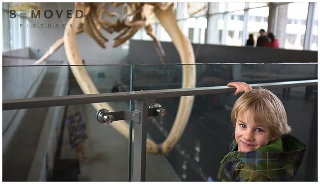 beaty-biodiversity-museum-ubc