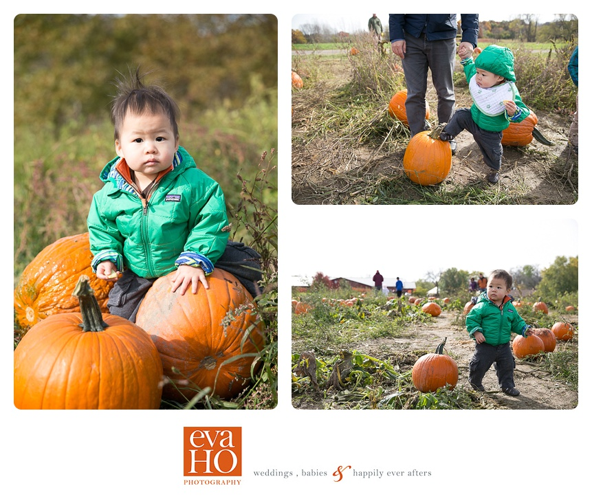 Kids_at_Pumpkin_Patch.jpg
