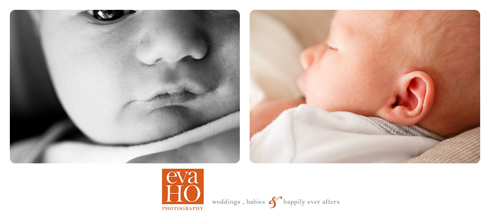 Chicago_Newborn_Photographer.jpg