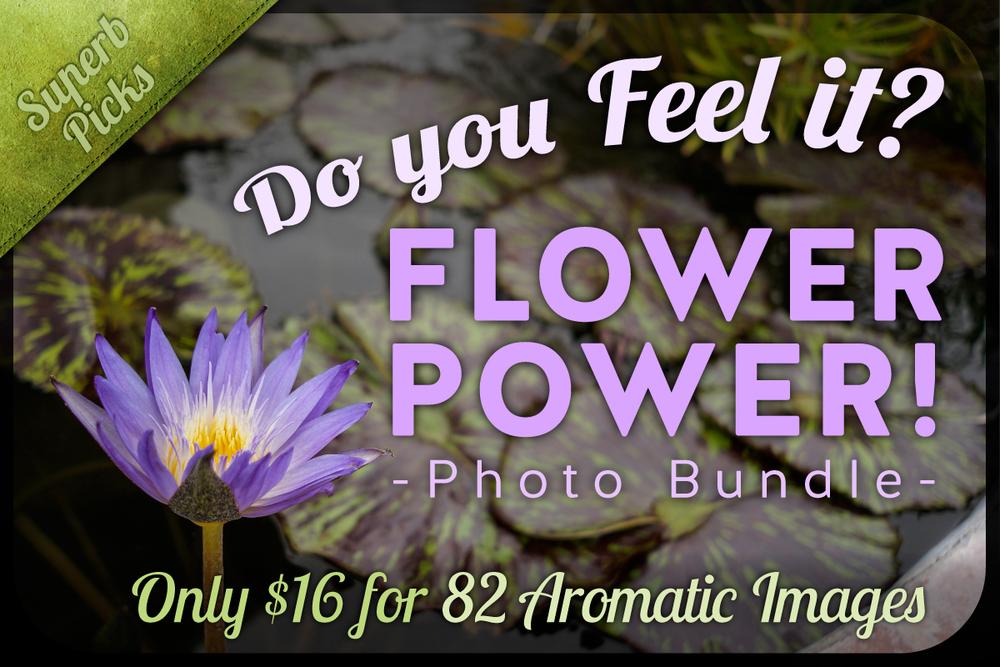 CM-Flower-Power-[Recovered]1.jpg