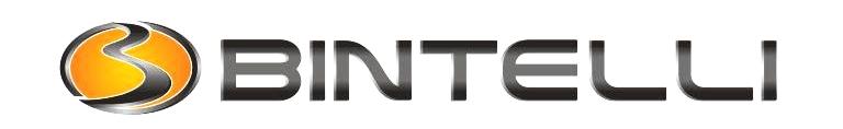 Bintelli logo new.jpg