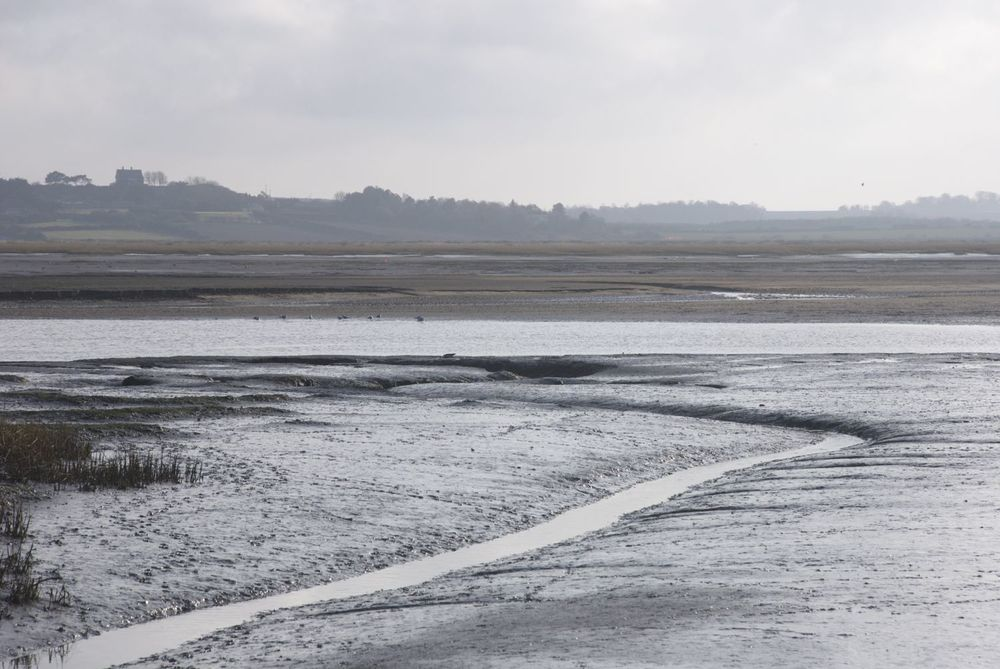 Blakeney Channel (March 2014)