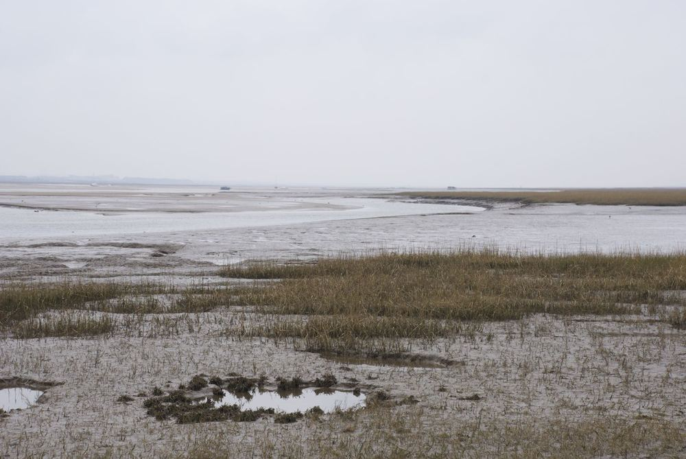 Blakeney Channel