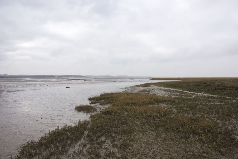 Blakeney Channel edge.jpg