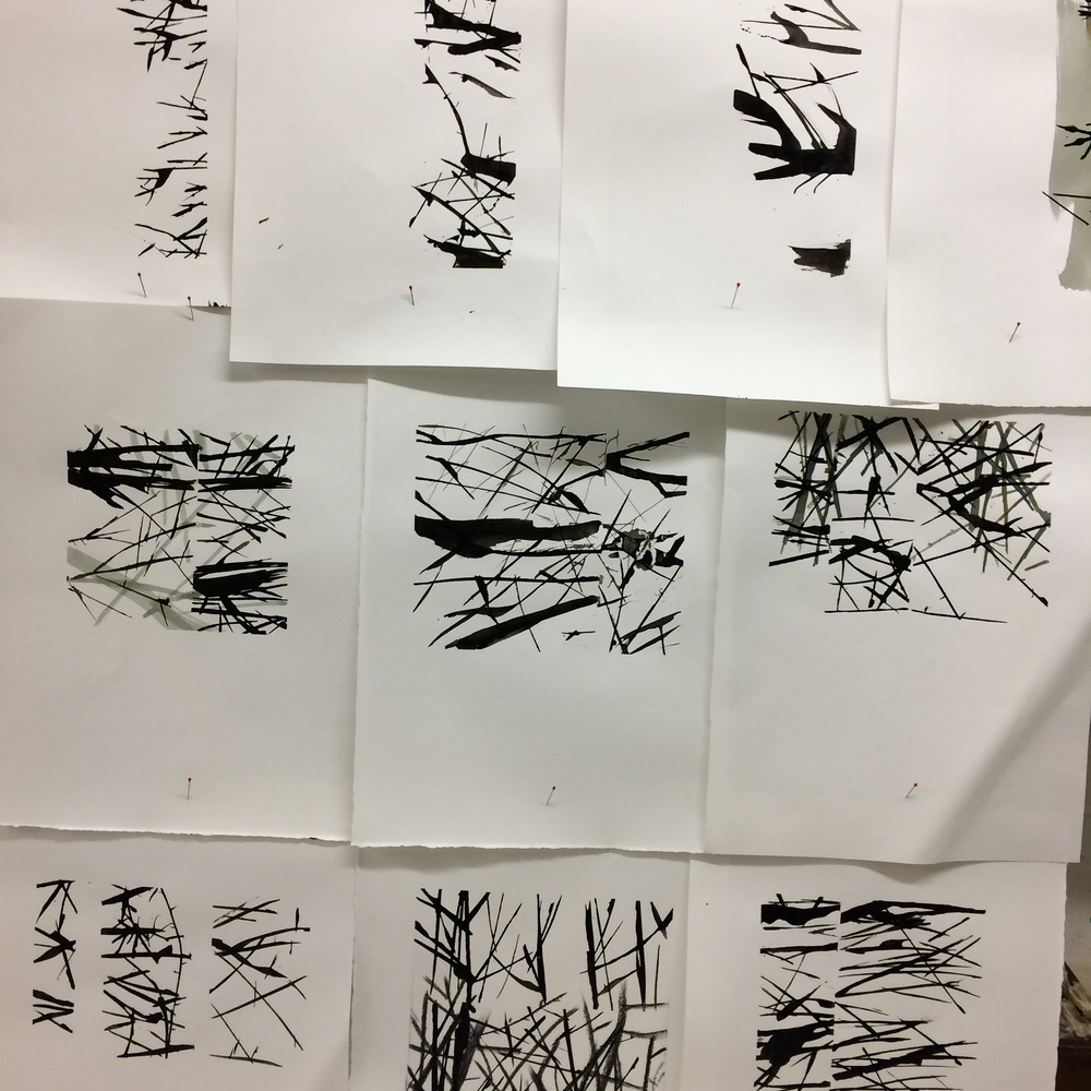 Hedge drawings - Indian ink, ink wash, charcoal