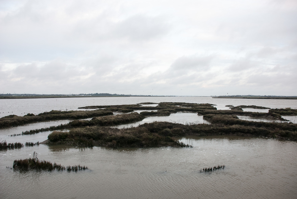 River Crouch 2014