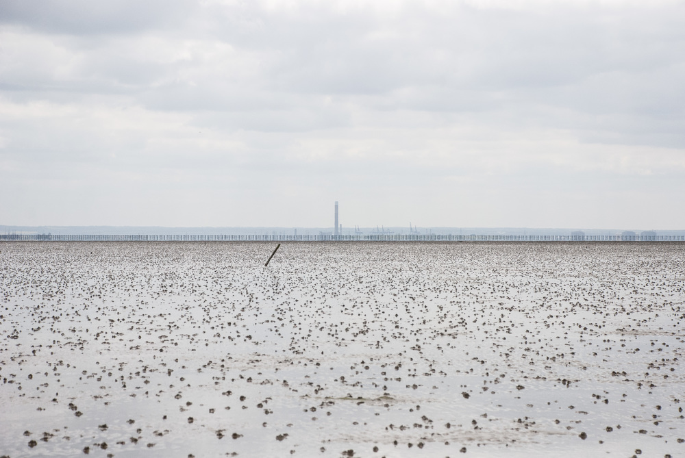 The Broomway 14May2016 42.jpg