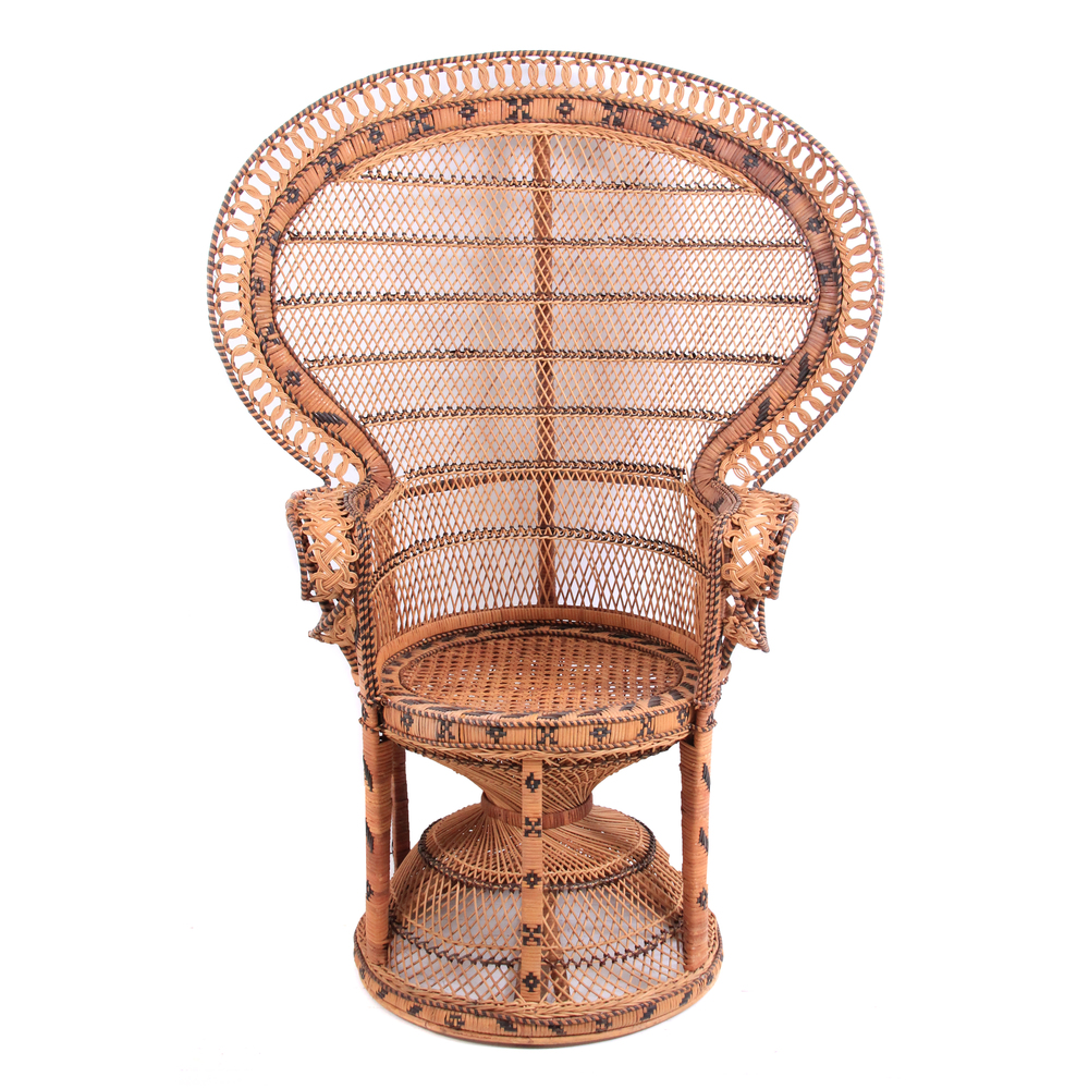 Vintage Peacock Fan Chair