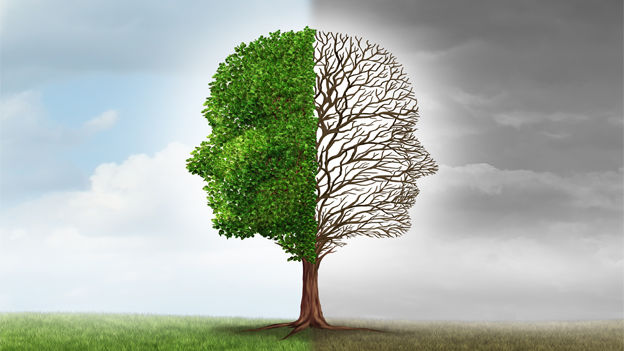 transform mindset.jpg