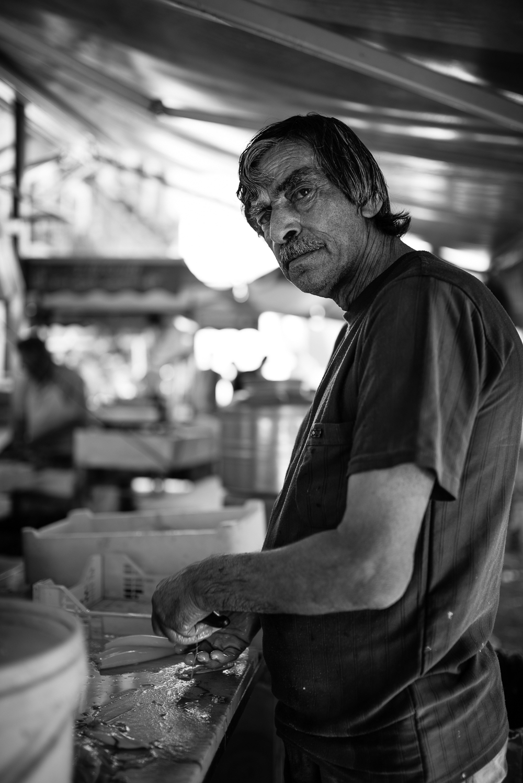 Catania fish market
