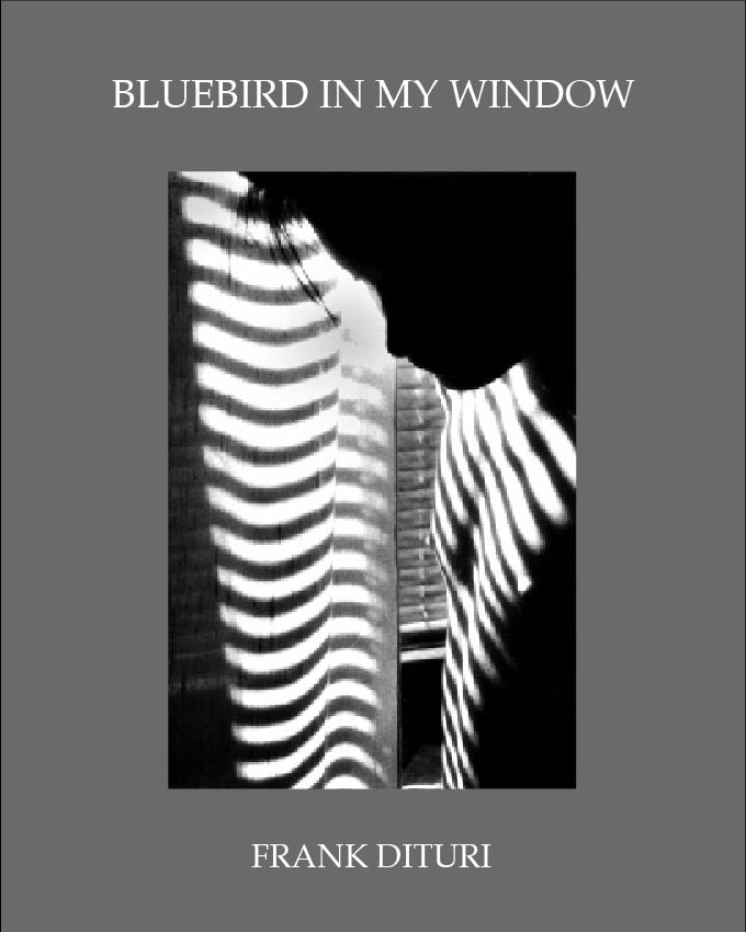 cover-bluebird.web.jpg
