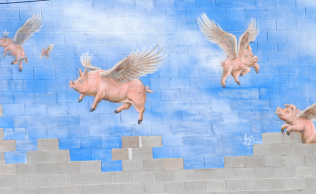 Flying Pigs by  Brad Smith    Creative Commons   flickr.com