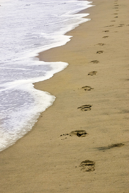 FootPrints in Sand by tom rydquist    creative commons   flickr