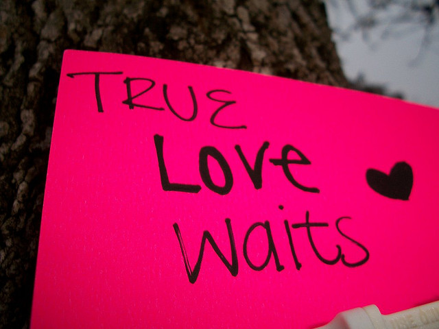 TRUE LOVE WAITS BY TATIANA P.  CREATIVE COMMONS   FLICKR