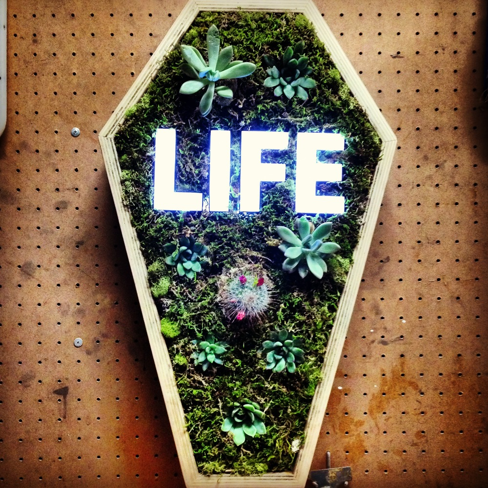 This piece was my first attempt at a vertical garden. I experimented with my love for horticulture and tried to incorporate my green thumb into my artistic process. The boxes of death show begged to consider the element of death. I felt compelled to rebel against the dark connotation and bring this coffin to life the only way I knew how, by making it grow.