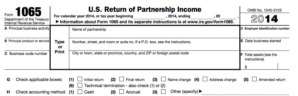 Standard Partnership Or Llc Return Form 1065 Wilson Financial