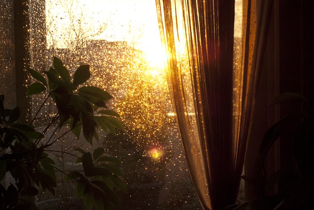 Golden Hour, home