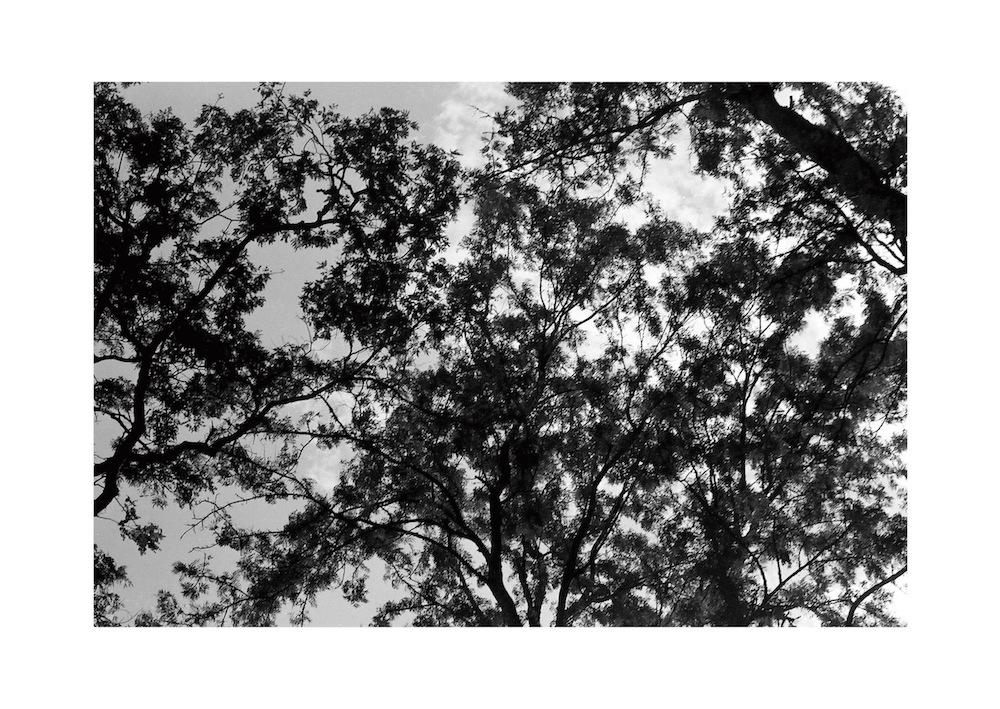 YoheiKoinuma_PhotoSeries_East-Aftrica_2008_37.jpg