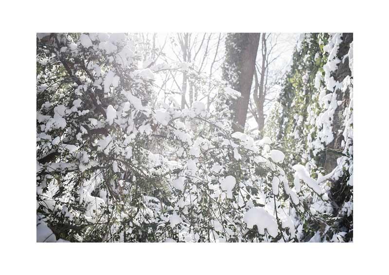 YoheiKoinuma_PhotoSeries_What-the-Blizzard-Broght_2014_09.jpg